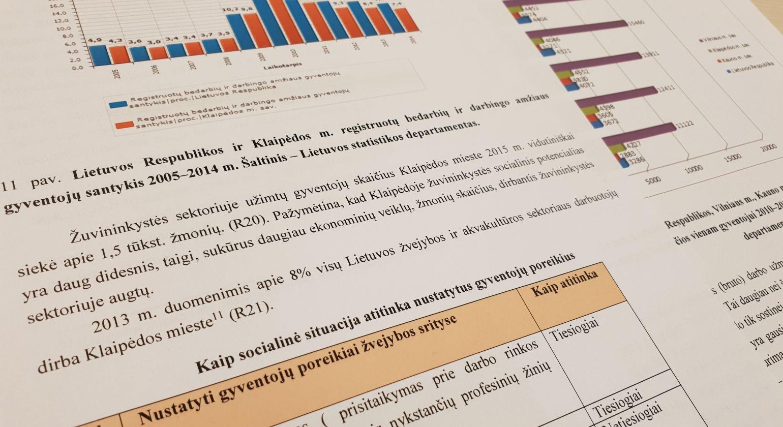 Strategija pateikta vertinti Nacionalinei mokėjimo agentūrai
